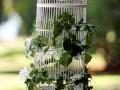 wedding-cage