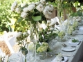 elegant-garden