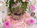 enchanted-birdcage